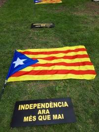 Casa 20200530 Independencia ara més que mai 46